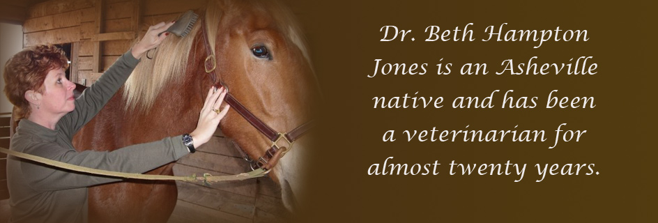 Dr. Beth Jones
